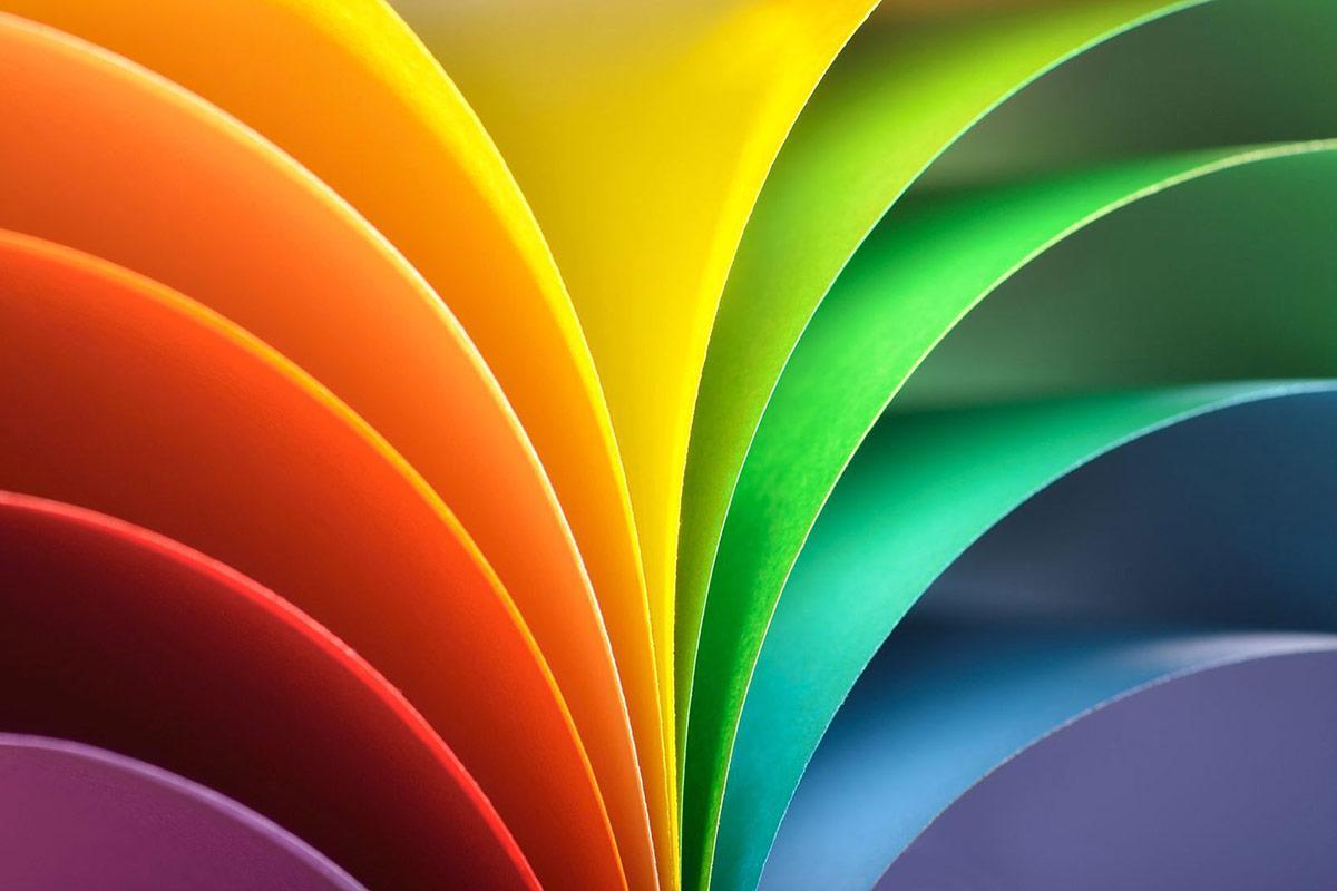 What's Your Colour Palette?