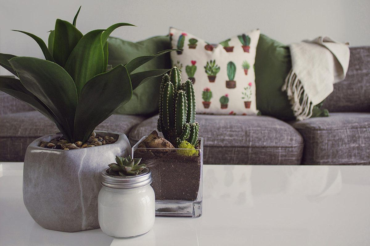 Top 10 Tips For Furnishing Your First Home