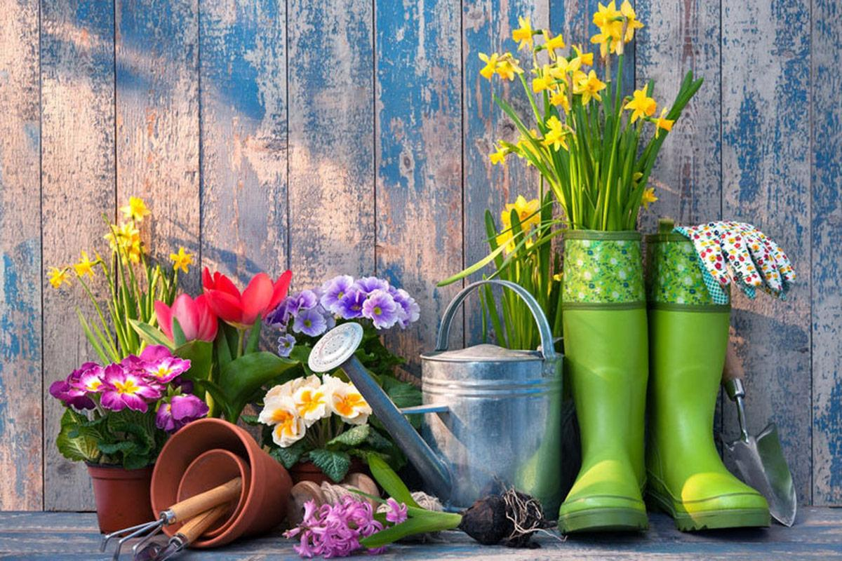 Five Things You Must Do In Your Garden This Spring