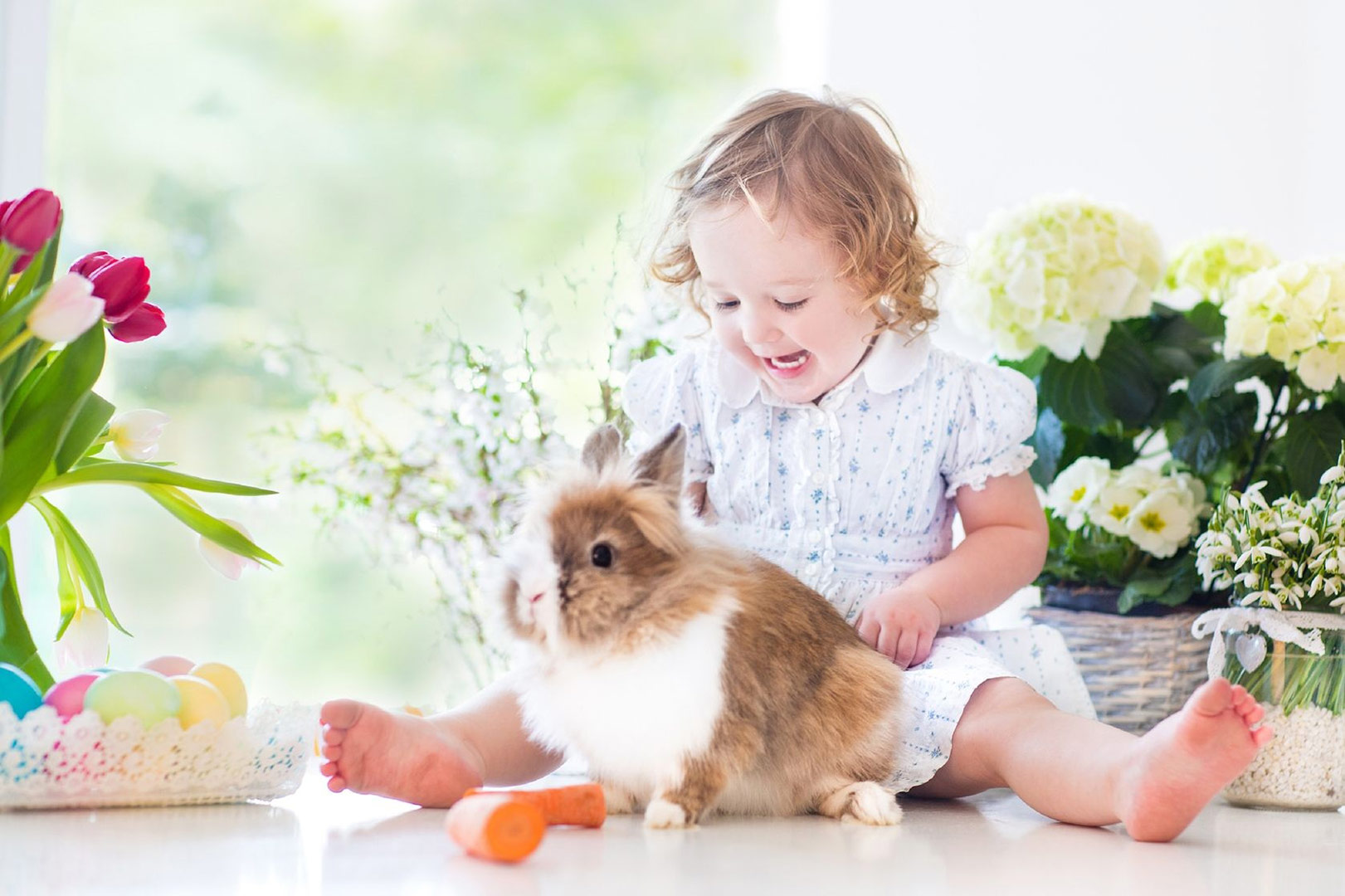 Hartleys-blog-on-easter-egg-hunt-ideas-picture-of-a-little-girl-and-a-rabbit