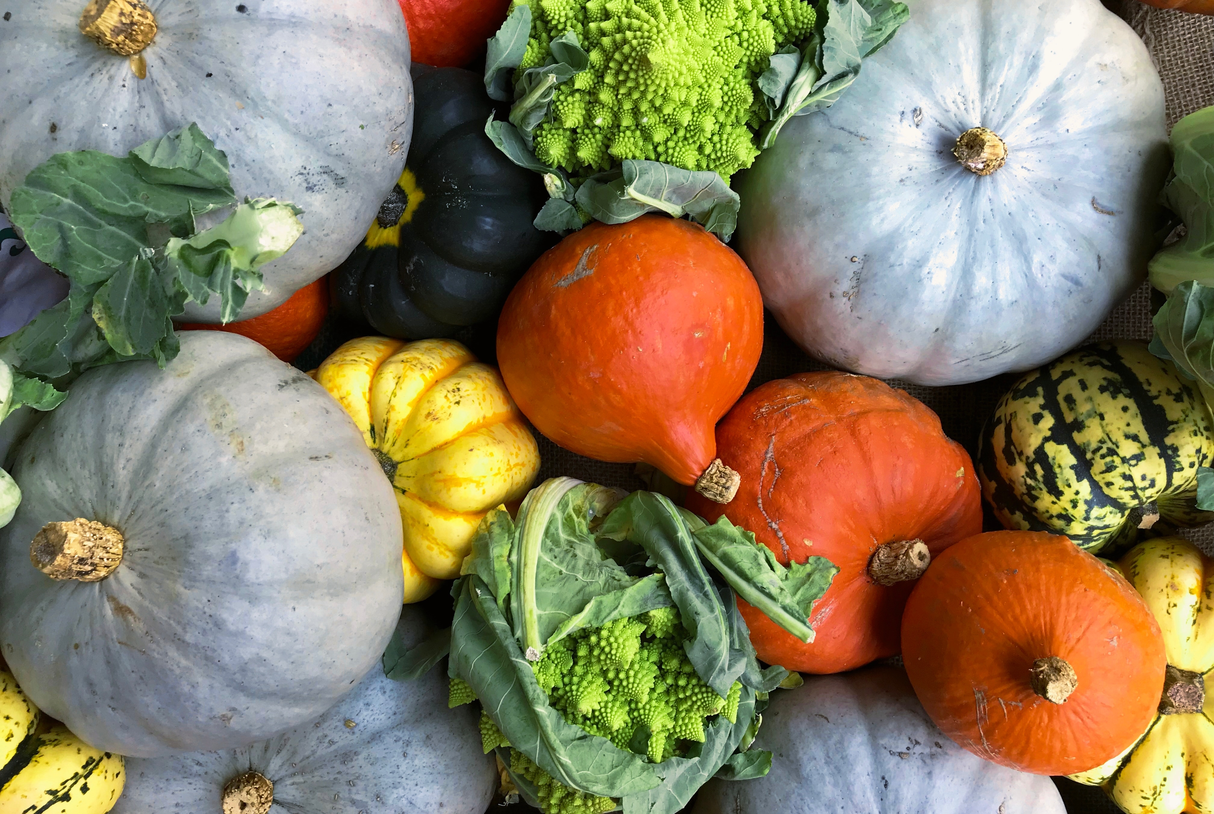 selection of colourful autumnal fruits and vegetables