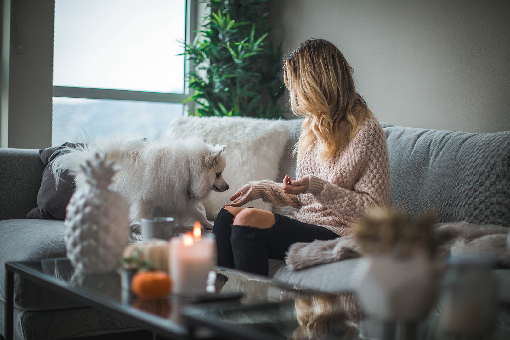 young woman with blonde hair sitting on her sofa with her small white fluffy dog
